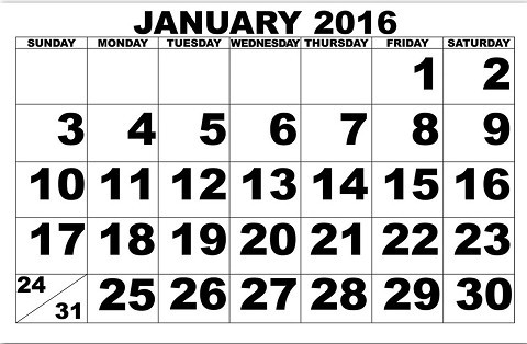 2016 2017 bizarre wacky holidays obscure holiday days